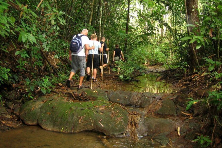 Thailand Chiang Mai Jungle Trekking