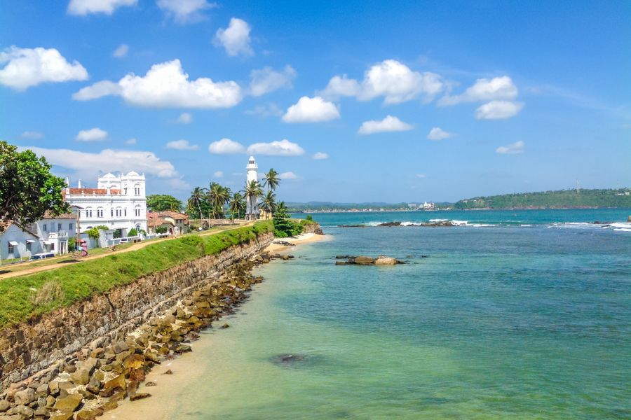 Galle 6