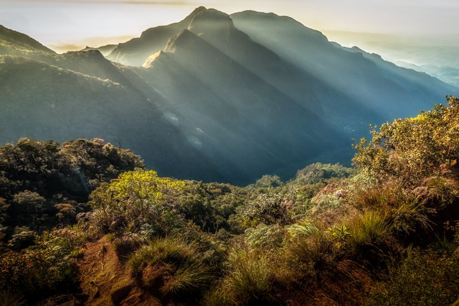 Horton Plains National Park 12